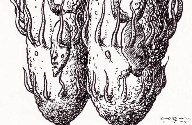 drawings-liqen-microbotica-11