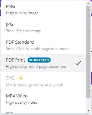 pdf cv formalari