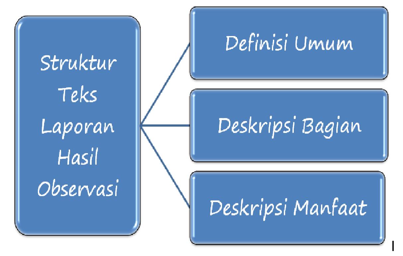 Struktur Teks Observasi Ciri Fungsi Contoh Terlengkap Ilham Teguh