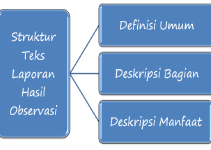 struktur teks observasi