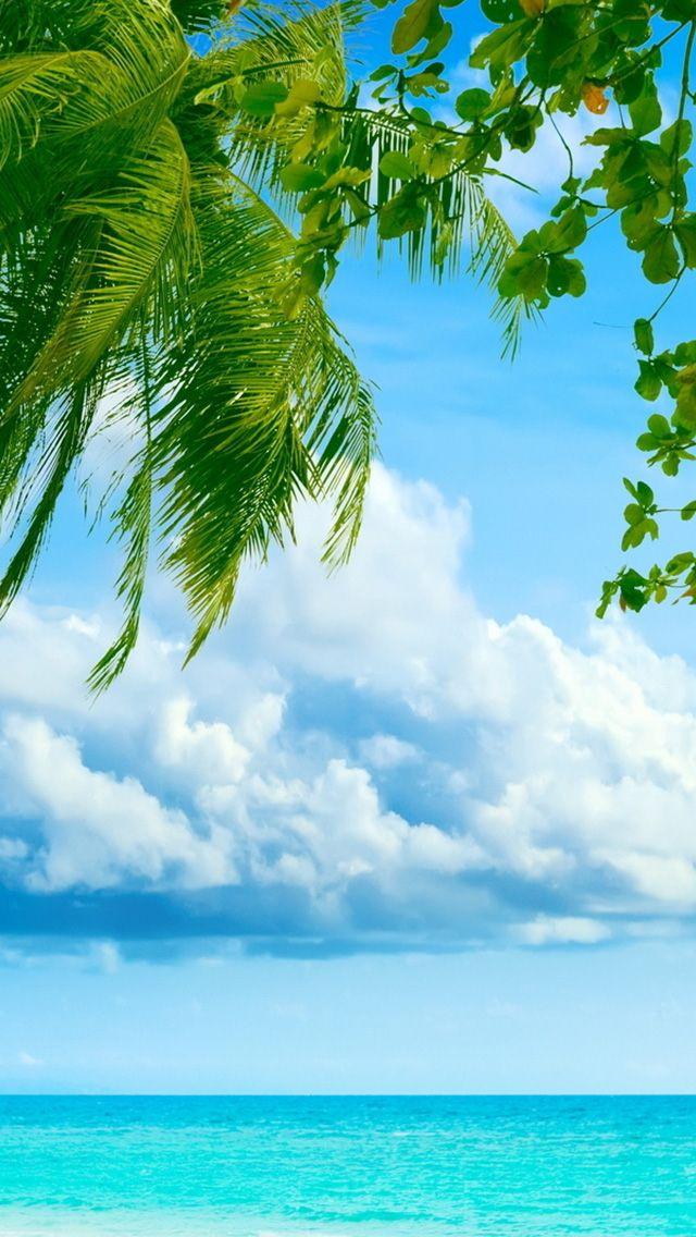 صور و خلفيات مناظر خضراء طبيعية مناسبة للجوال و سطح المكتب لحن