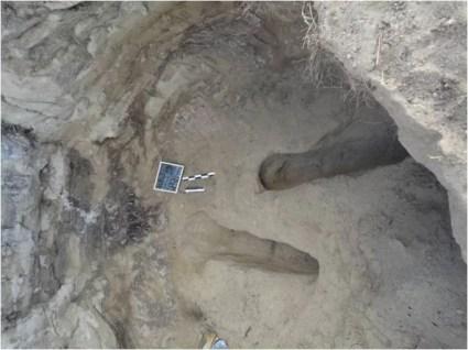 Στη θέση «Τρύπες», στο γνωστό από την δεκαετία του 1960 και από πρόσφατες έρευνες της Εφορείας μυκηναϊκό νεκροταφείο, ερευνήθηκαν τρείς νέοι μυκηναϊκοί θαλαμωτοί τάφοι: ένας συλημένος που απέδωσε αρκετή κεραμεική (2012). Δύο, επίσης συλημένοι, όμοιοι τάφοι και ένας ασύλητος, ο οποίος προέκυψε κατά τη διάρκεια της σωστικής ανασκαφής, ερευνήθηκαν κατά το 2013. Τα μνημεία χρονολογούνται στα 1200-1100 π. Χ.