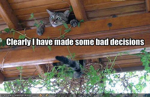 Friday Funny! ;-)  Bad decisions (5/5)