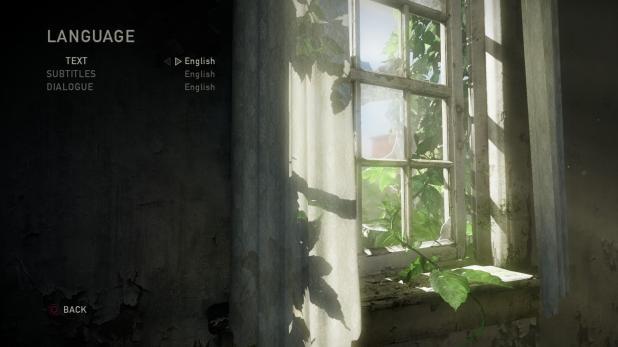 Main Menu - Last Of Us - Options - Language
