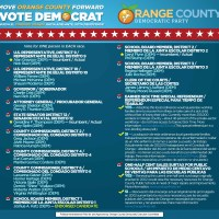 2014 August Elections: Know the Democrats Running in Orange