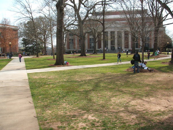 View of the lawn and Main Library on North Campus