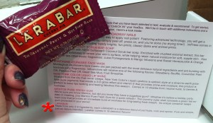 larabar holiday voxbox influenster