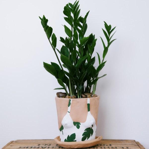 lady planter3