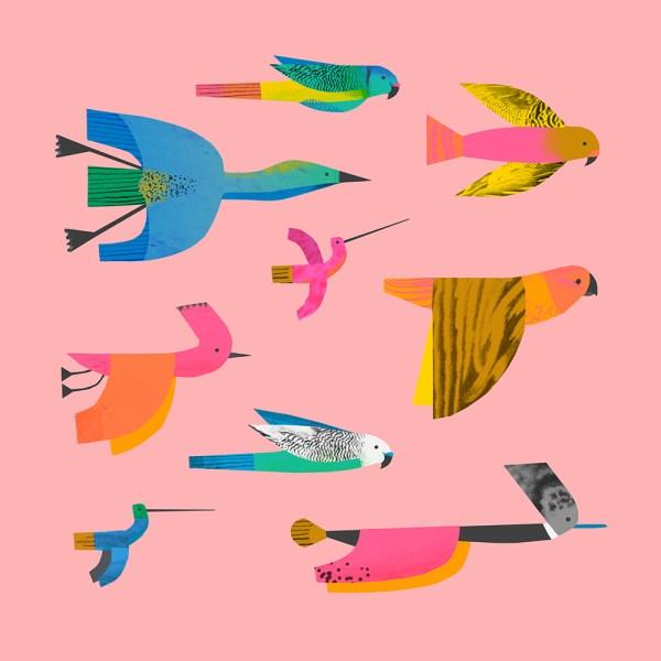 02_birds