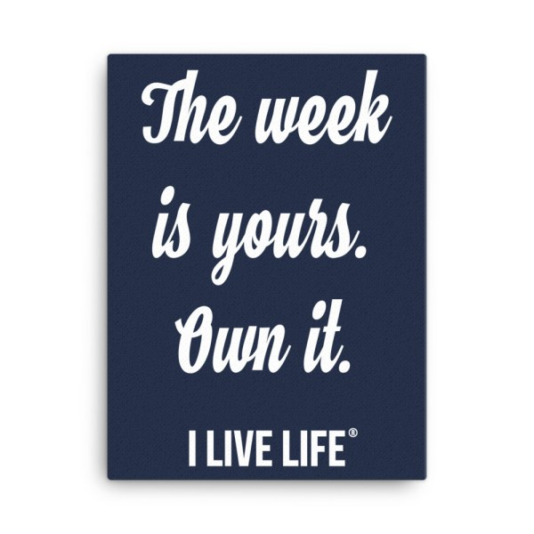 Own it | Motivational Quote Canvas 18×24