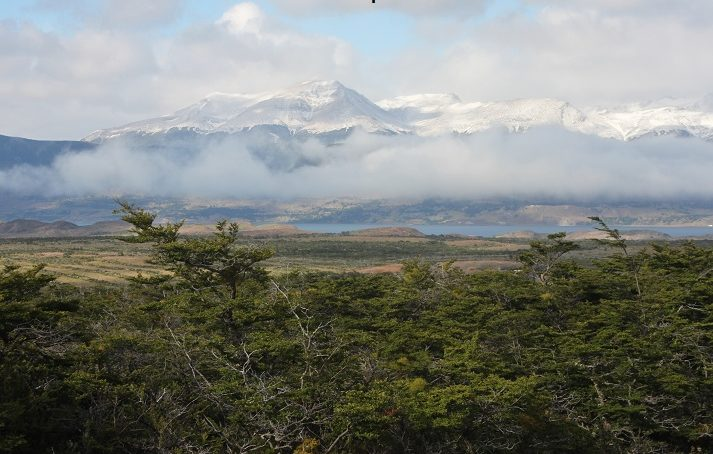 Cueva Milodon, Patagonia, Chile