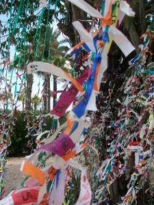 Wish tree at the Dali Museum - great way to discard of wrist tags