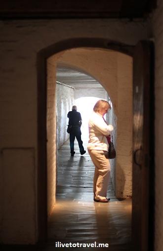 Monticello basement