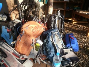 Kilimanjaro Hike:  Day 1 – Getting Going