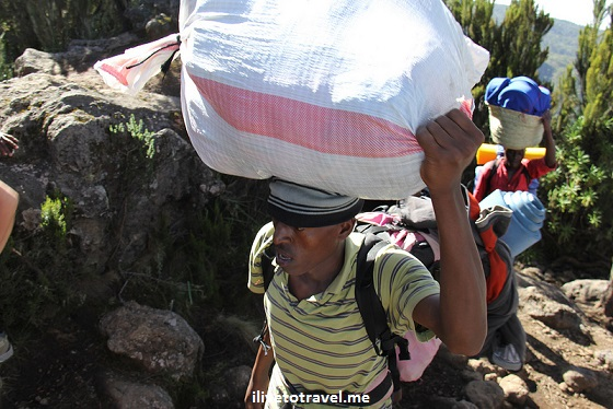 Porter carrying load up Kilimanjaro