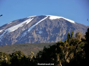 One final look up at Kilimanjaro from the final stretch of the Mweka Route