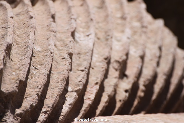 Ruins column Jerash Roman Jordan