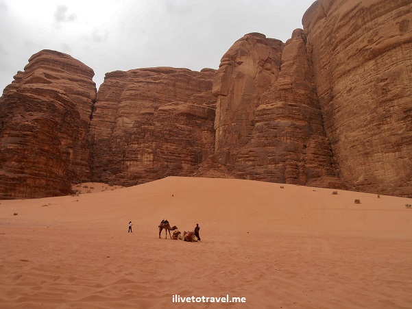 "Canyon siq ""wadi rum"" desert jordan camel sand travel photo outdoors adventure Olympus"
