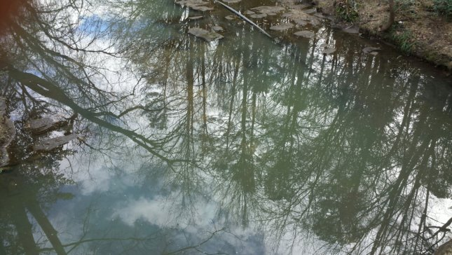 Tanyard Creek, Atlanta, Civil War, battlefield, nature, sky, trees