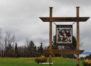 Michigan, wine, Leelanau Peninsula, Traverse City, Sip and Savor, wine tasting, Ciccone, Madonna