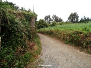 Camino, Santiago, Spain, trekking, hiking, Olympus, photo, trails