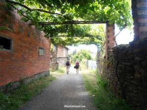 On the Camino de Santiago:  Day 5 from Boente to Salceda