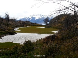 Chile, Patagonia, Torres del Paine, W circuit, hiking, trekking, travel, photo, marsh, bog peat,Olympus