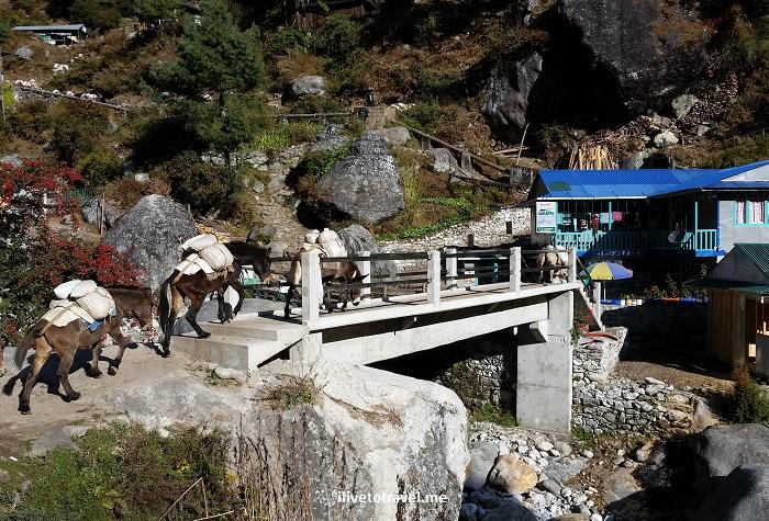 Nepal, Himalayas, trekking, hiking, Tok Tok, bridge, river, Everest Base Camp