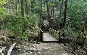 Atlanta, hiking, Georgia, mountains, nature, outdoors, bridge, forest, trees