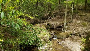 Pine Mountain, hiking, Georgia, waterfall, dam, nature, outdoors, photo, Samsung Galaxy