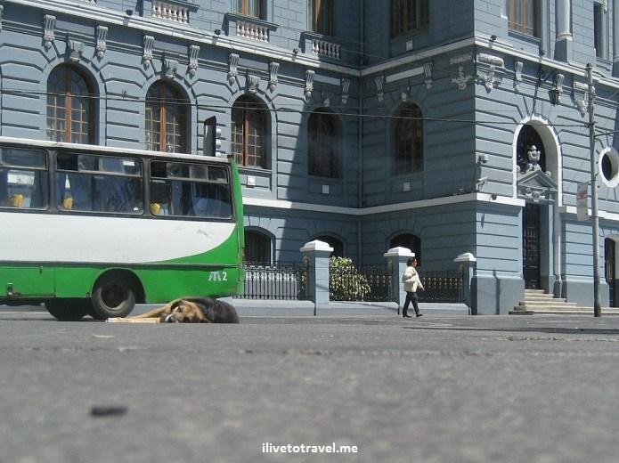 Valparaiso, Valpo, Chile, puerto, Sudamerica, mar, colinas, acensor, fonicular, foto, viaje, turismo, explorar