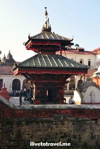 Pashupatinath, temple, Kathmandu, Nepal, templo, Hinduismo, cremation, ritual, religion, Asia, explore, travel, photo