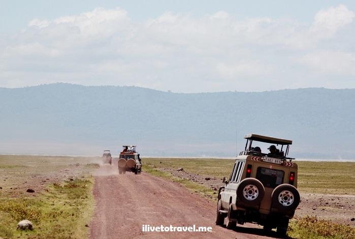 Ngorongoro, Serengeti, safari, Tanzania, explore, adventure, Africa, travel, photos