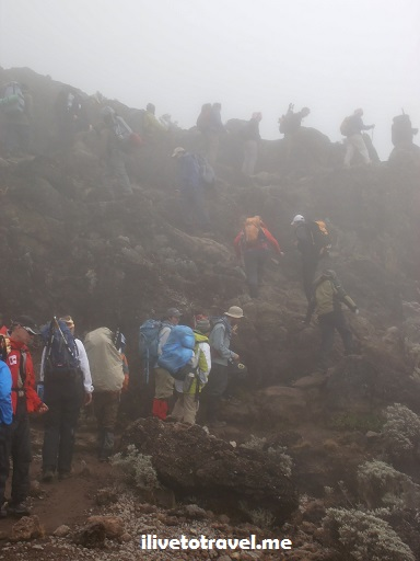 Kili, Kilimanjaro, Barranco Wall, Tanzania, trekking, hiking, climbing, adventure, Africa, outdoors, photo, travel