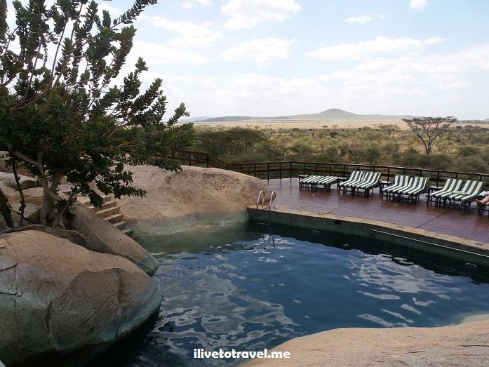 Ngorongoro, Serengeti, safari, Tanzania, explore, adventure, Africa, travel, photos, Seronera Lodge, pool
