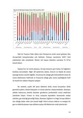 AB Enerji Politikasında Beklentiler ve Kabiliyetler11