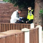'Clown mask and rifles' taken from house by police and bomb squad