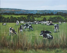 """""""Dairy Cows and Escarpment"""", by Pamela Griffith"""
