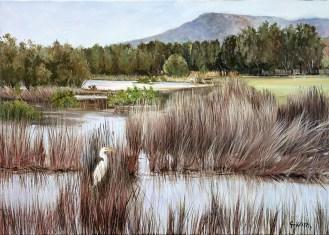 """Fairy Meadow Creek, Towradgi"", by Pamela Griffith"