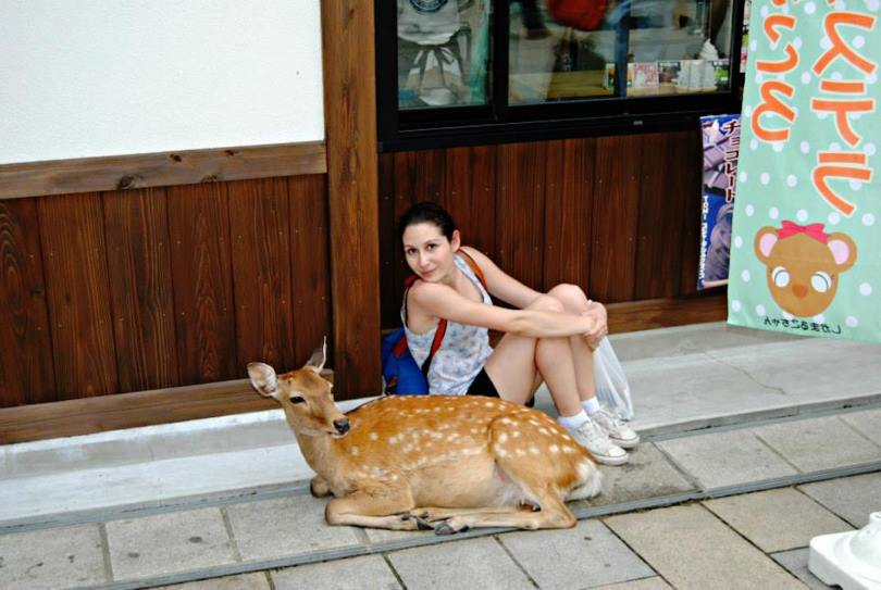 viaggio nel mondo animale