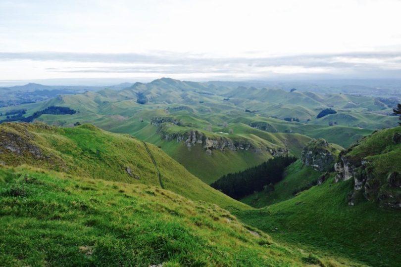 Nuova Zelanda insolita