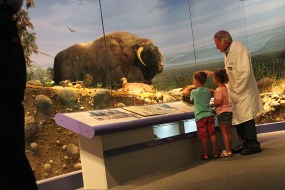 Docent Dave Schroeder talks about the Ice Ages in Illinois.