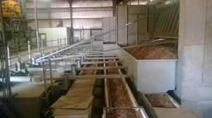 Wood chip processing operation