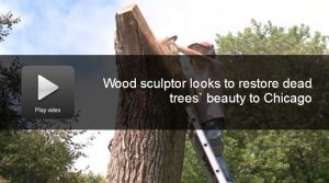 urban wood sculptor