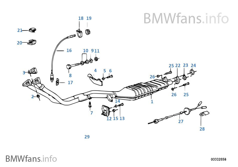 bmwfans info