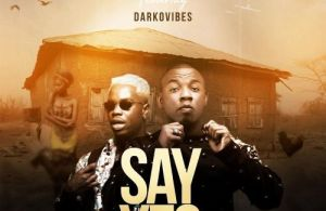 DOWNLOAD: Wayo ft. Darkovibes – Say Yes (mp3)