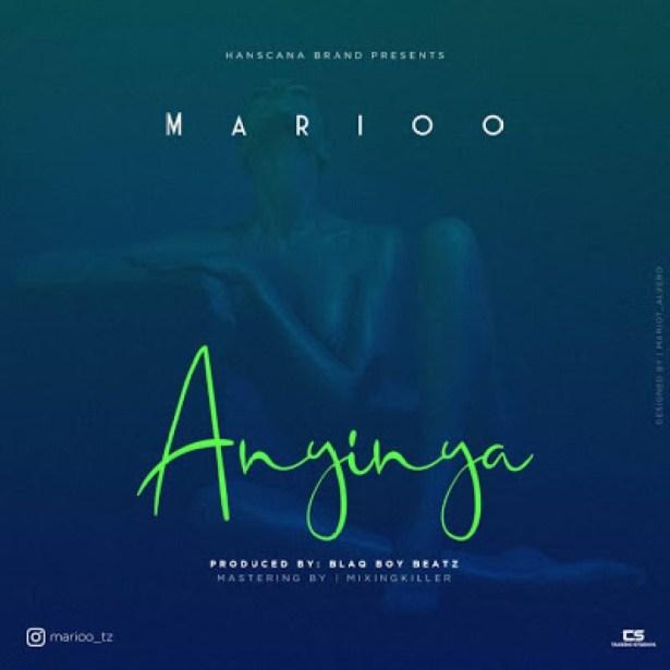 Download Tanzanian Instrumental: Marioo – Anyinya
