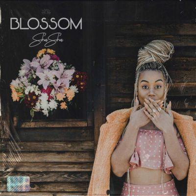 DOWNLOAD: Sha Sha Ft. DJ Maphorisa & Kabza De Small – Sing It Back (mp3)