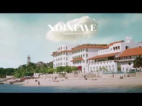 DOWNLOAD Gemma Griffin Ft. Linex & Barakah The Prince – Ndinewe (TZ Remix) MP3