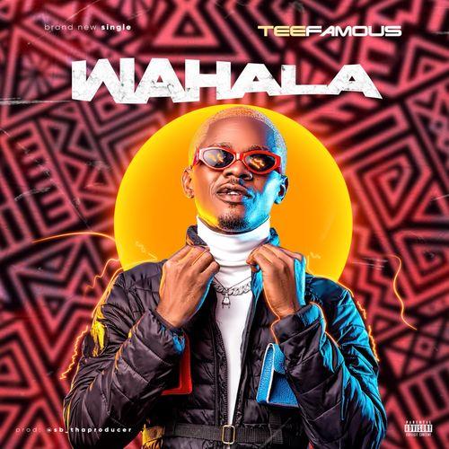 DOWNLOAD Teefamous – Wahala MP3